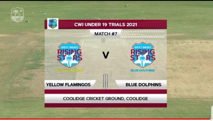Blue Dolphins vs Yellow Flamingos - U19- Stream Live.jpg