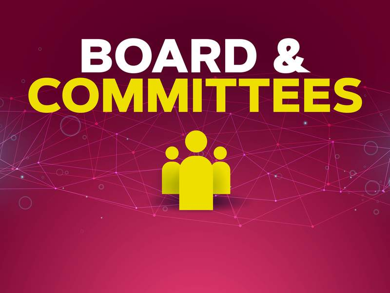 Corporate Gov - Board and Committees
