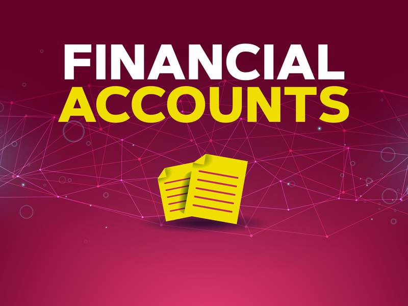 Corporate Gov FINANCIAL ACCOUNTS.jpg